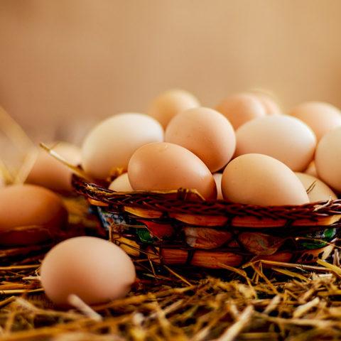 Eichenbühler Eier